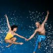 Alvin Ailey American Dance Theater - Mixed Bill